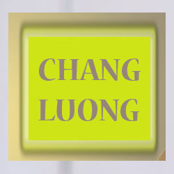 chang luong chinese restaurant on Telegraph